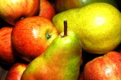 Apple & Pears
