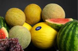 Melons & Grapes